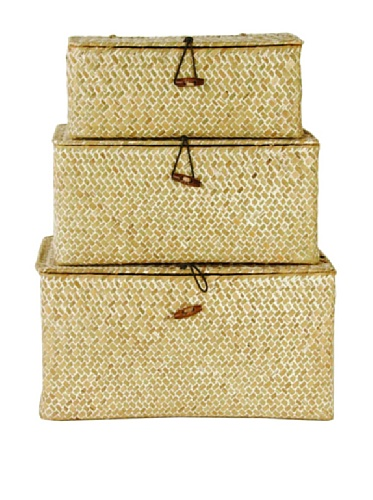 Wald Imports Set of 3 Seagrass Reed Trunks (Whitewash)