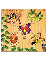 Junior Identification Tray With Knobs Insects Multicolor from Skillofun