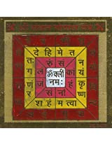 Exotic India Shri Santaana Gopala Yantra - Brass