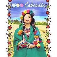 Caboodle No. 4 2016 小さい表紙画像