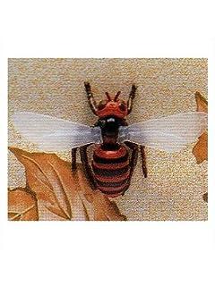 カラダを張って実験! 蜂に刺されて一番痛い部位は?