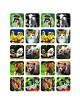 Eureka Baby Animals Real Photos Theme (Set Of 24)