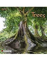 Trees 2017 (Mini)