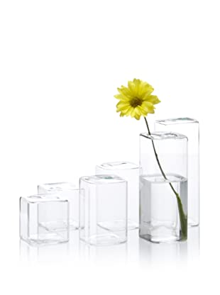 Chive Set of 6 Cube Vases (Clear)