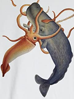 """""""深海の魔王""""30の秘密 「戦慄シミュレーション ダイオウイカvs自衛隊 もし戦わば…」vol.3"""