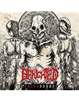 Necrobreed (Limited Edition Box + Carabiner + Sticker + Poster)