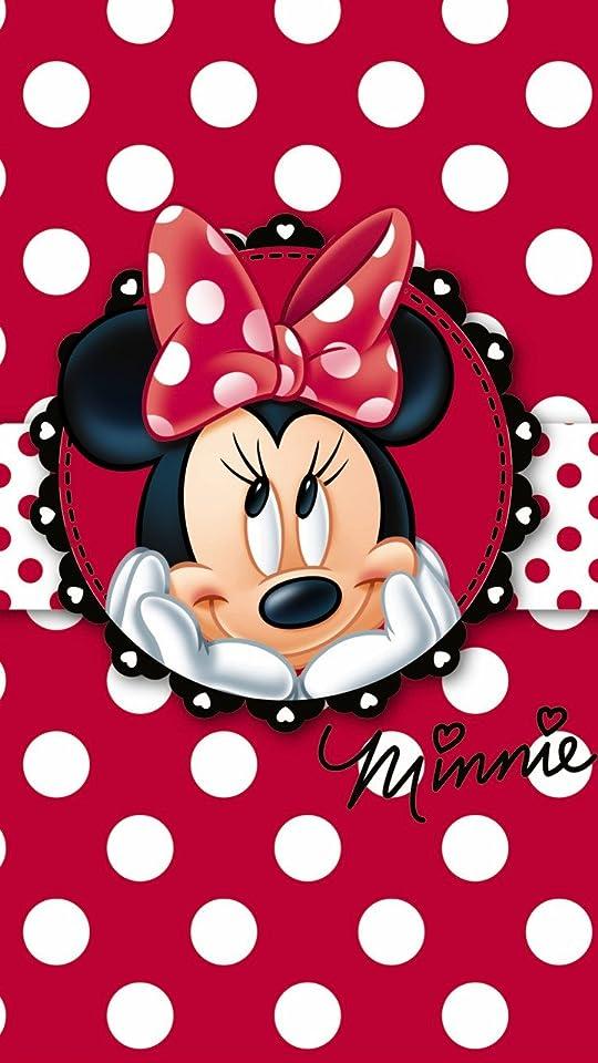 ミニーマウスの画像 p1_29