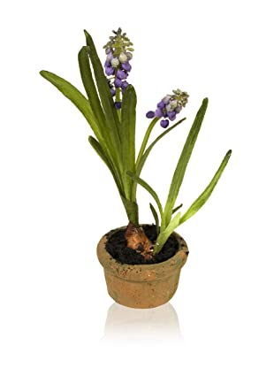 New Growth Designs Set of Faux Grape Hyacinths with Bulb in Pot, Blue