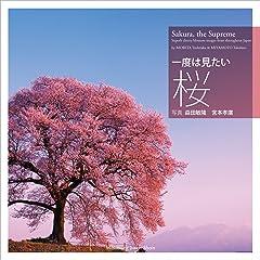 風情も台無し? 桜を散らす「花散らし」とはアレのことだった!