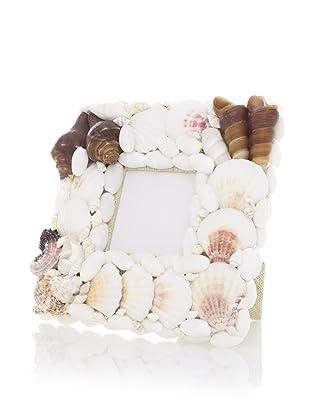 Seaside Cottage Shell Frame (White/Brown)