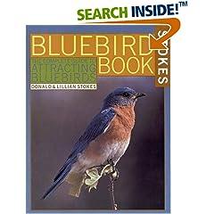 ISBN:0316817457