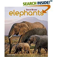 ISBN:0500650551