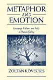 cover of Metaphor and Emotion: Language, Culture, and Body in Human Feeling (Studies in Emotion and Social Interaction)