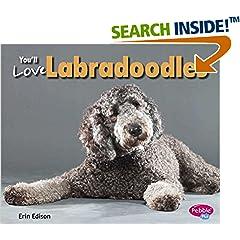 ISBN:1491406380