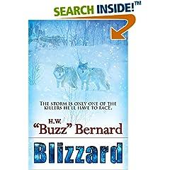 ISBN:1611945933