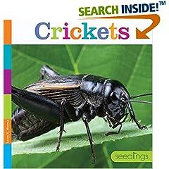 ISBN:1628321857