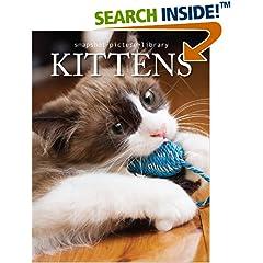 ISBN:1740896386