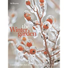 The Winter Garden: Create a Garden That Shines Through the Forgotten Season