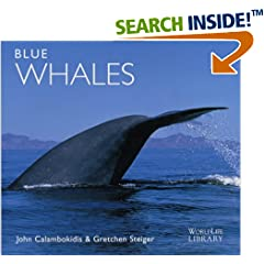 ISBN:1900455218