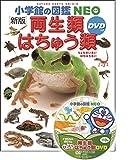〔新版〕両生類・はちゅう類 DVDつき (小学館の図鑑 NEO)