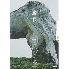 盆栽―NHK美の壷