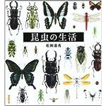昆虫の生活