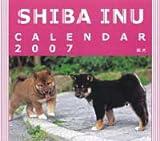 2007卓上カレンダー 柴犬