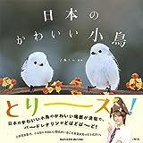 日本のかわいい小鳥