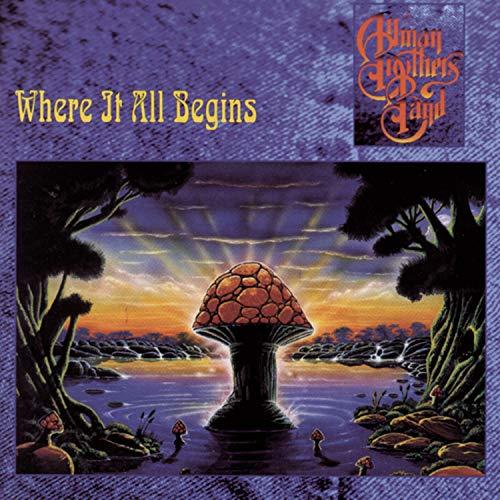 Allman Brothers Band - Hot, High & Hallucinating - Zortam Music