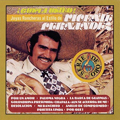 Vicente Fernandez - Al Final Lyrics - Zortam Music