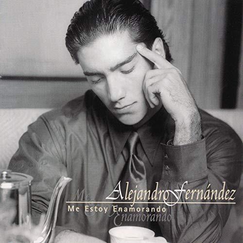 Alejandro Fernandez - Me Estoy Enamorando Lyrics - Zortam Music