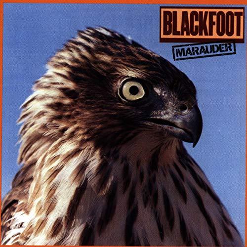 Blackfoot - Searchin