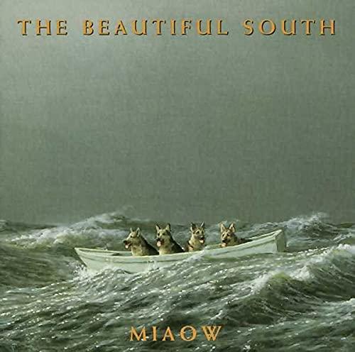 Beautiful South - Everybody