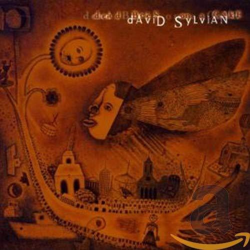 David Sylvian - Dead Bees On A Cake - Lyrics2You
