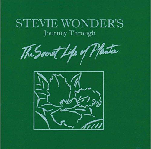 Stevie Wonder - The Secret Life of Plants - Zortam Music