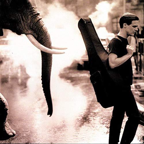 Bryan Adams - On A Day Like Today - Zortam Music