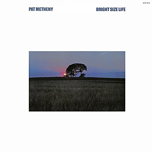 Pat Metheny - Bright Size Life - Zortam Music