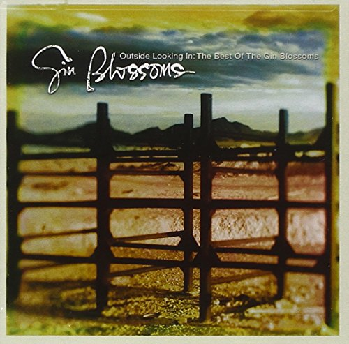 Gin Blossoms - The Best Of The Gin Blossoms - Zortam Music