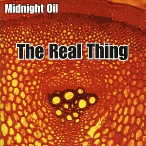 Midnight Oil - Real Thing [Australian Import] - Zortam Music