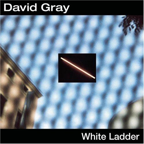 David Gray - Birds of prey - Zortam Music