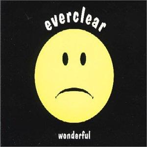 Everclear - Wonderful (Radio Edit) - Lyrics2You