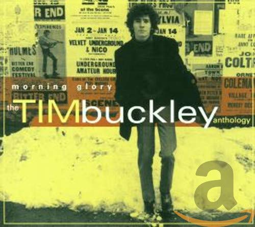 Tim Buckley - Morning Glory, The Tim Buckley Anthology (Disc 1) - Zortam Music