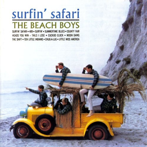 Beach Boys - Surfin