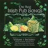 Capa de The Best Irish Pub Songs