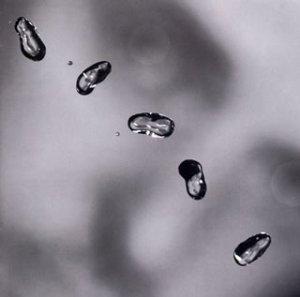 Peter Gabriel - Best Of 2002 (CD 2) - Zortam Music