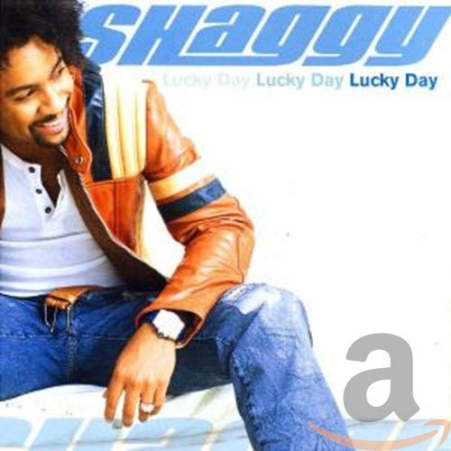 Shaggy - Strength of a Woman Lyrics - Zortam Music