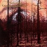 album art to Enter Suicidal Angels