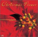 Christmas Flower~poinsettia~