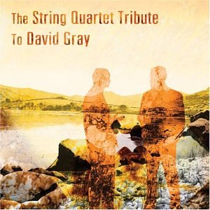 David Gray - The Other Side - Zortam Music