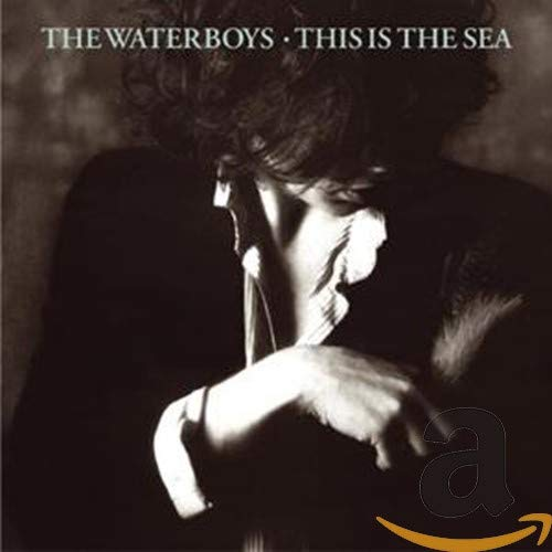 The Waterboys - This Is the Sea [Remastered & Expanded Version] - Zortam Music